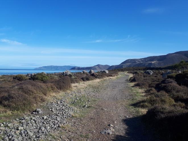 wild coast track 3.jpg